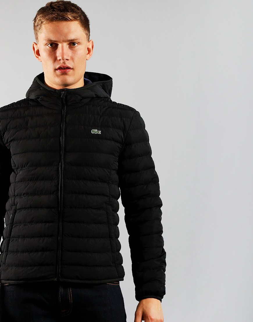 Lacoste Light Weight Hooded Puffer Jacket Abysm