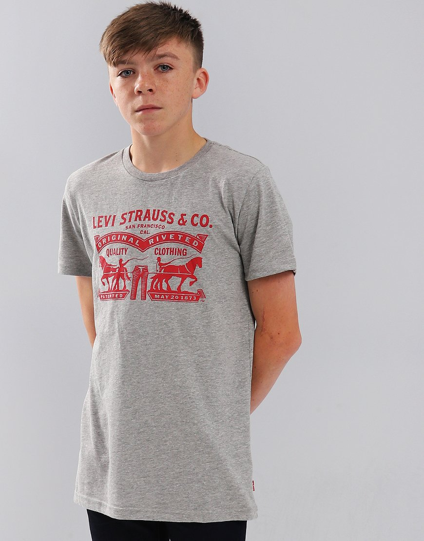 Levi's Kids Horses T-Shirts Grey